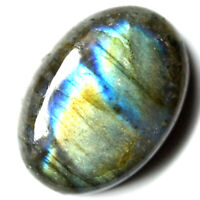 Cts. 52.65 Natural Labradorite Full Multi Fire Cab Oval Cabochon Loose Gemstone