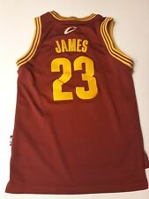 LeBron James Cleveland Cavaliers Basketball Jersey Numbers And Letters Sewn