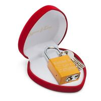 Elegantes Liebesschloss Gold Herzbox + Gravur Geburtstag Jahrestag Geld Geschenk