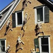 """150cm/59"""" Size Jointed Skeleton Halloween Party Haunted House Decoration Props"""