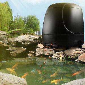 Adjustable Automatic Aquarium Timed Auto Fish Tank Pond Food Feeder Feeding
