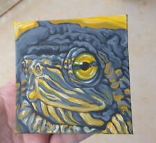 "By Carla Smale, Baby Red-Eared Slider Turtle, Original Oil Painting, 4x4"" Magnet"
