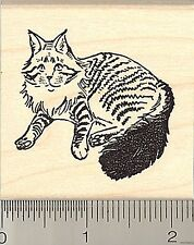 Maine Coon Cat rubber stamp H9203 wood mounted
