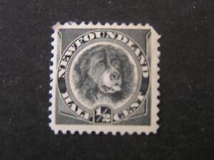 NEWFOUNDLAND, SCOTT # 58, 1/2c.VALUE BLACK 1894 NEWFOUNDLAND DOG ISSUE MH