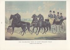 """1974 Vintage Currier & Ives HORSE RACING """"STALLION TEAM 4 IN HAND"""" COLOR Litho"""