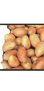 Organic Bitter Kola Nut (Garcinia Kola) 1LB- W/Africa