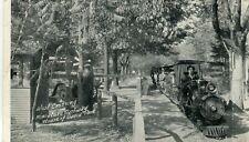USA MI Benton Harbor - House David Park Miniature Railway West Crossing postcard