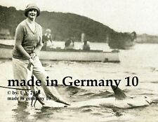 """Haie in Australien"" SYDNEY Harbour  French report ORIGINAL historic 1930 SHARK"