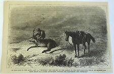 1878 magazine engraving ~ Elk Hunt In Two Acts, Buckshot ties elk leg up