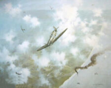 Michael Turner print Against The Odds signed by 25 Battle of Britain veterans