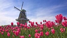 Windmill and Flowers Mosaic Diamond painting Kit 40 cm x 30 cm like cross stitch