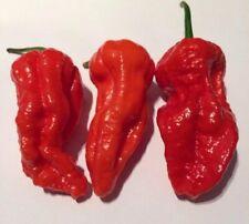 25+ Super-Hot Red Naga Morich Premium Pepper Seeds-D 54