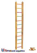 Lazy Bones Parrot Ladder Multi Coloured 92cm