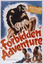 FORBIDDEN ADVENTURE Movie POSTER 27x40 B Wilfred Lucas J.S. Horne