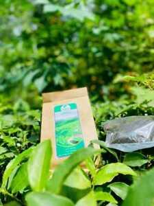 Seeker Ceylon Tea 100% Natural Organic Research Proved True Pure High Quality