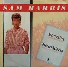 "SAM HARRIS - Hearts Of Fire (12"") (VG/VG)"