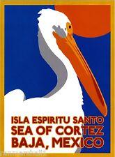 Baja California Sea of Cortez Mexican Spanish Travel Advertisement Art Poster