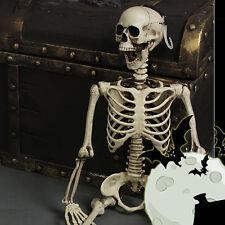 #2 1Pcs Halloween Realistic Skeleton Scary Skull Man Bone Creepy Prop Decor GIFT