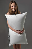 KING SIZE SOFT PILLOW 90% WHITE HUNGARIAN GOOSE DOWN BETTER THAN HOTEL QUALITY