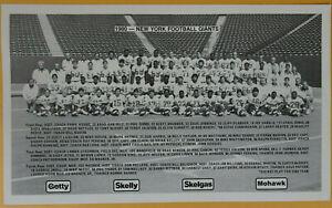 1980 NEW YORK FOOTBALL GIANTS NFL TEAM ISSUED 6X10 PHOTO