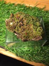 Mineral specimen. GREEN PYROMORPHITE on QUARTZ MATRIX. Scotland.
