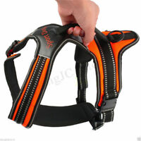 Heavy Duty Padded Pet Dog Harness Strap Summer Cool Soft Safe Vest Collar L/M/S