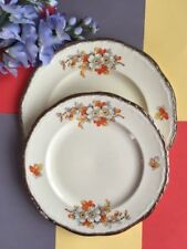 Earthenware Tableware British Alfred Meakin Pottery