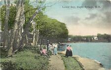 1907-1915 Hand-Colored Postcard; Lower Bay Maple Springs Ny Chautauqua Co posted