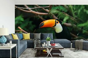 3D Toucan Tree Branch R667 Wallpaper Wall Mural Self-adhesive Commerce Kay