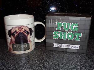 Puckator Bone China Mug FAWN PUG SHOT BNIB