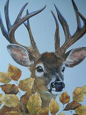 White tailed Deer animal wildlife Fall Autumn painting