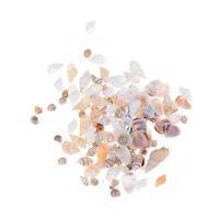 Über 40 Stücke Miniatur Puppenhaus Sea Shell Bonsai Lanscape IY ecor 1:12 4 4H