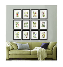 Set of Botanical Prints 12 Wild Flowers English Cottage Living Room Wall Art