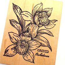 Orchids Rubber Stamp Flowers  Leaf Plant Leaves Latin Botanicals PSX Vintage HTF