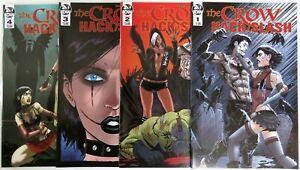 The CROW HACK/SLASH (4) Issue #1 2 3 4 IDW 1st print comic set