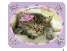 """3X LAVENDER T SHIRT """"PINK HATTING TIRES ME OUT"""" KITTY CAT FOR LADIES OF SOCIETY"""