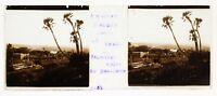 Il Sahel Dintorni Algeri Algeria Foto Placca Da Lente Stereo Avril 1903