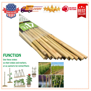 4 Feet Garden Stakes, Plant Stakes Supports Climbing for Tomatoes. Bamboo 25pcs