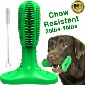 Dog Toothbrush Stick Dog Teeth Cleaning Chew Toy Pet Oral Dental Care Cleaner UK