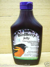 Songbird Essentials BirdBerry Jelly Oriole Jelly 6 Pack SE6010
