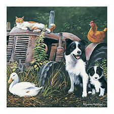 Border Collie Dogs Blank Greeting Card Red Tractor Hen Ginger Cat Farm Art Card