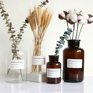 Glass Vase Flower  Dried Flower Vase Decoration Home Nordic Brown 10pc Labels