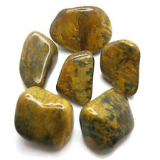 Lionskin Tumbled Crystal - Radiation Protection, Aids Memory, Unblocks Energy