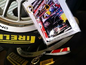 Genuine race used carbon fibre Red Bull Racing F1 car part wing keyring art card