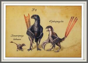 DINOSAUR Scansoriopterygidae CHINA Hebei 辽宁 Liaoning 河北 Prehistoric BIRD card #1