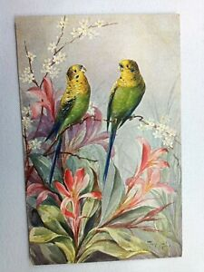 Vintage Postcard Two Birds Yellow/Green Sitting on Flower Branch