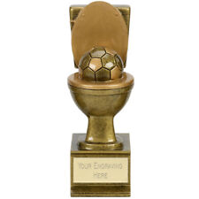 GOLDEN FLUSH FOOTBALL TOILET TROPHY AWARD IN THE SH*T TROPHY BOOBY PRIZE A1882