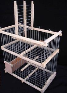 Cage à trébuchet // Cage de récupération oiseaux évadés