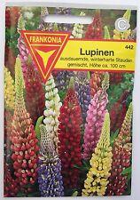 Lupinen Samen Saatgut Frankonia 442 Pflanze Blume Blumen