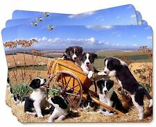 Border Collie in Wheelbarrow Picture Placemats in Gift Box, AD-BC3P